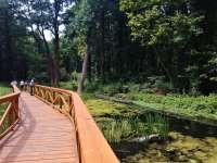Tavirózsa tanösvény és lombkoronasétány vár a Hévízi-tónál